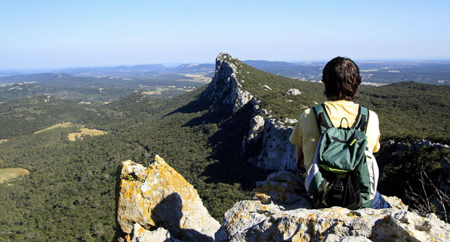 The pic saint loup adt 34 h rault tourisme - Office tourisme pic saint loup ...